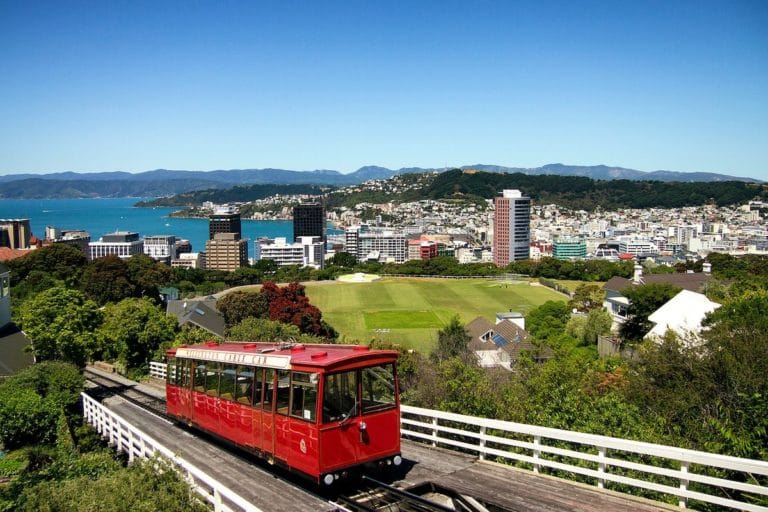 The best of Wellington
